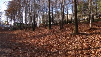 23 پارک در دو سال گذشته در تبریز احداث شده است